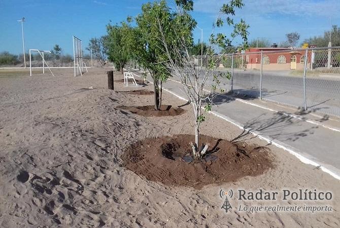 Sistema de riego por goteo para todo el municipio smr - Sistema riego goteo ...
